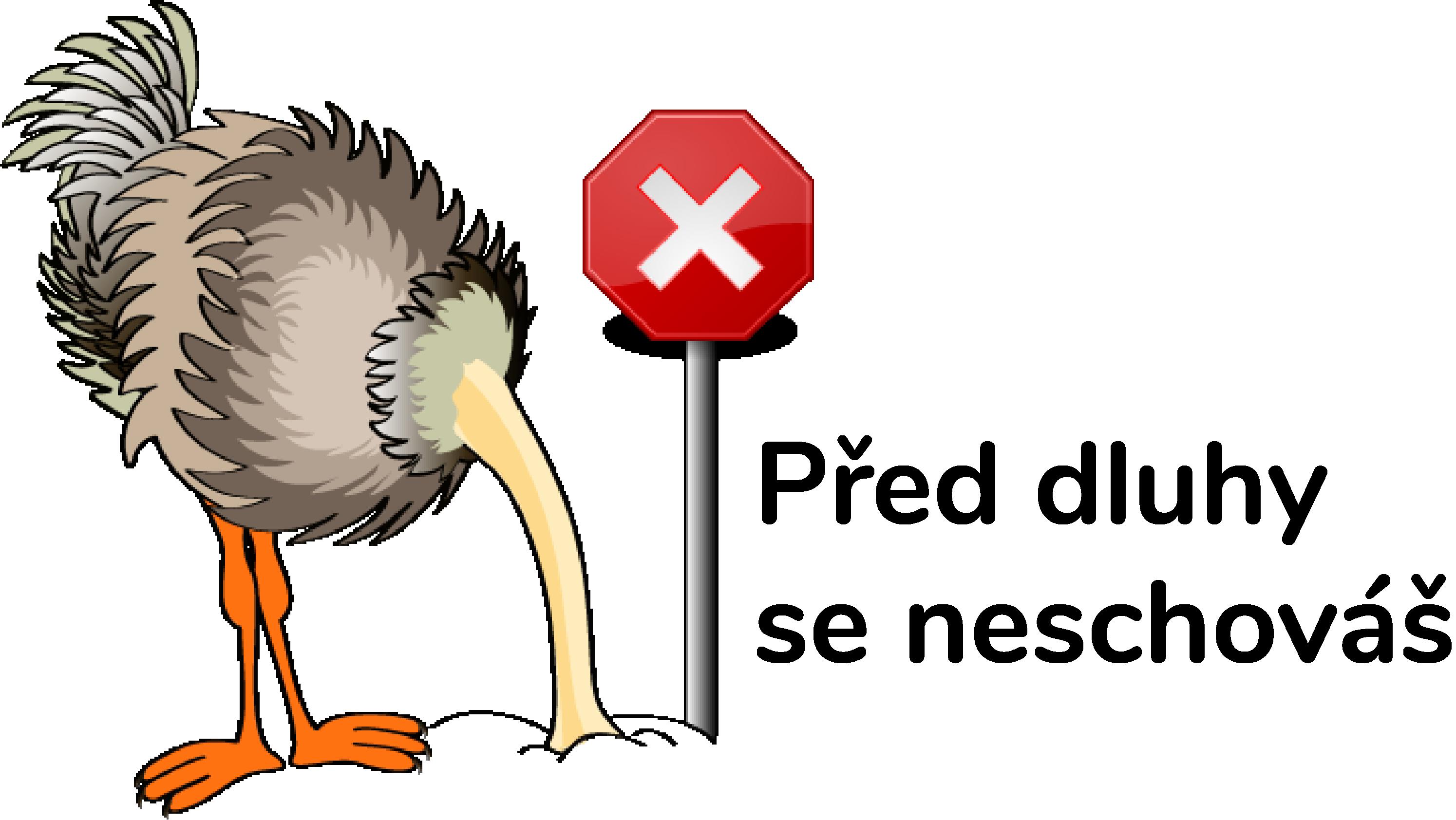 Dluhový poradce praha logo